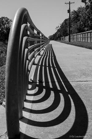 Trail Rail