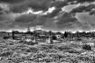 Graveyard  in Dol...
