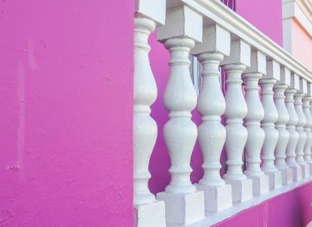 Purple and Pillars, Capetown