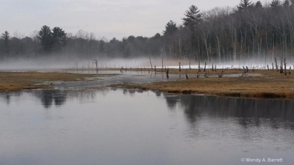 Spring Fog - ID: 15367178 © Wendy A. Barrett