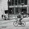 City Cyclist
