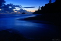 Wilderness Coast after Dark