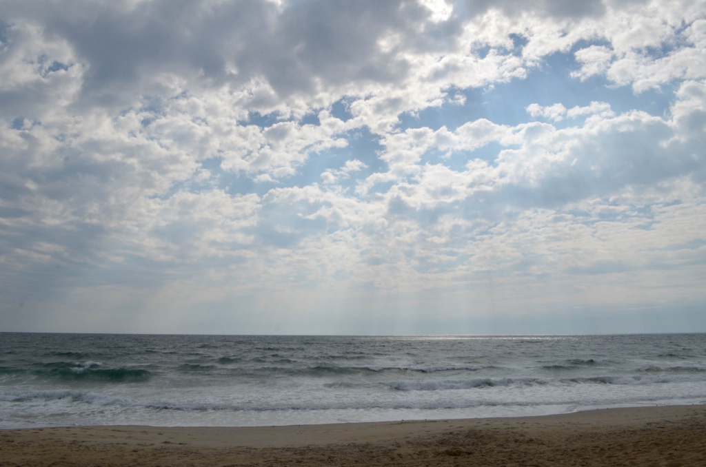 Outer Banks, NC - ID: 15372486 © Nora Odendahl