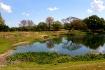 Serengeti At Busc...