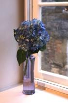 Vase in the Window