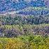 2Cades Cove Church View - ID: 15378947 © Fran  Bastress