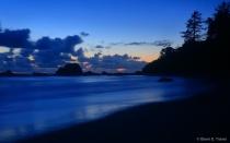 Wilderness Coast beach #4