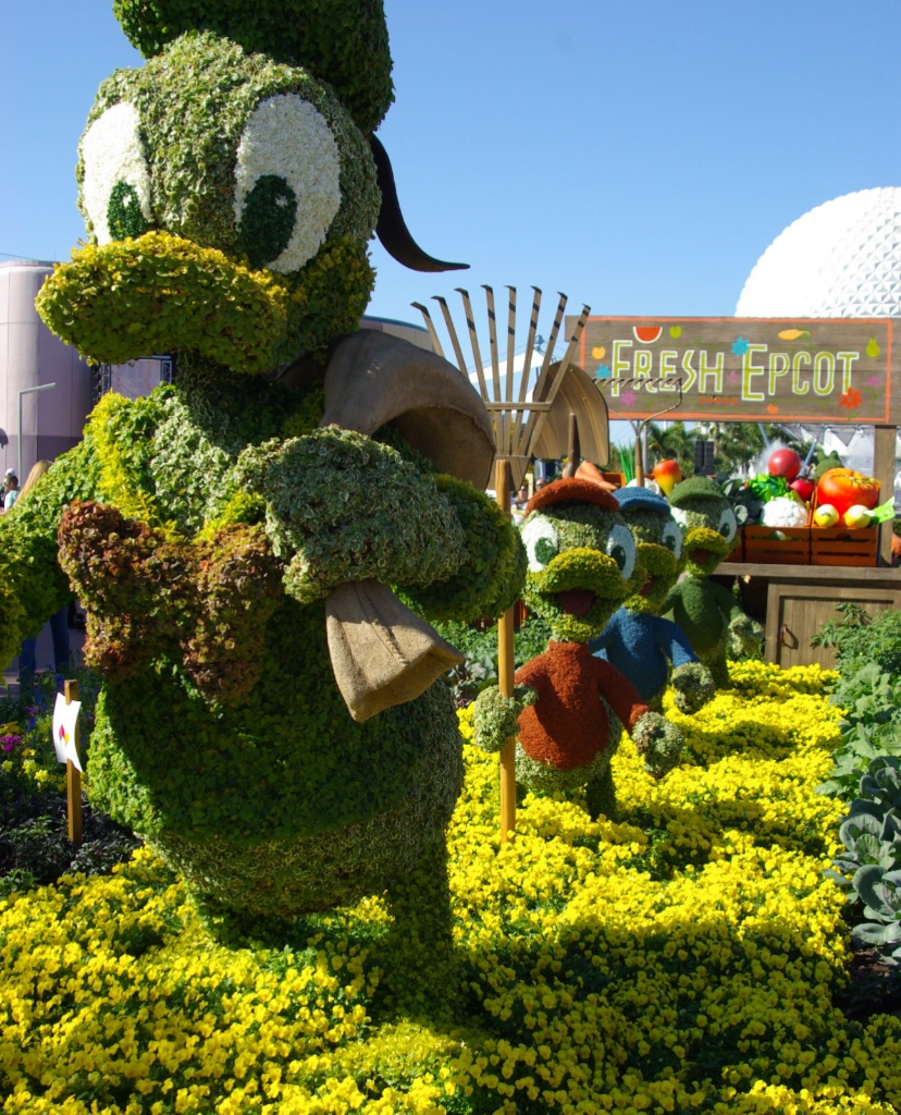 Flower and Garden at Epcot