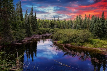 Reflection at Algonquin Park