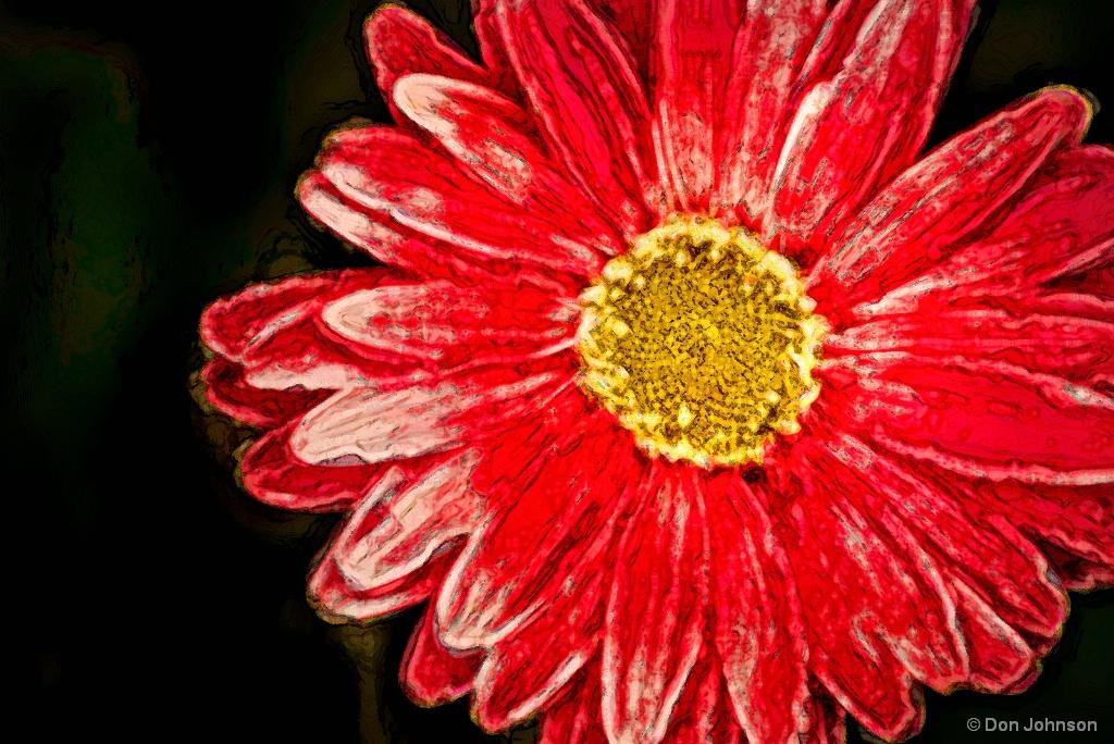Artistic Gerbera-Pink 5-16-17 044