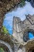 Villers Abbey