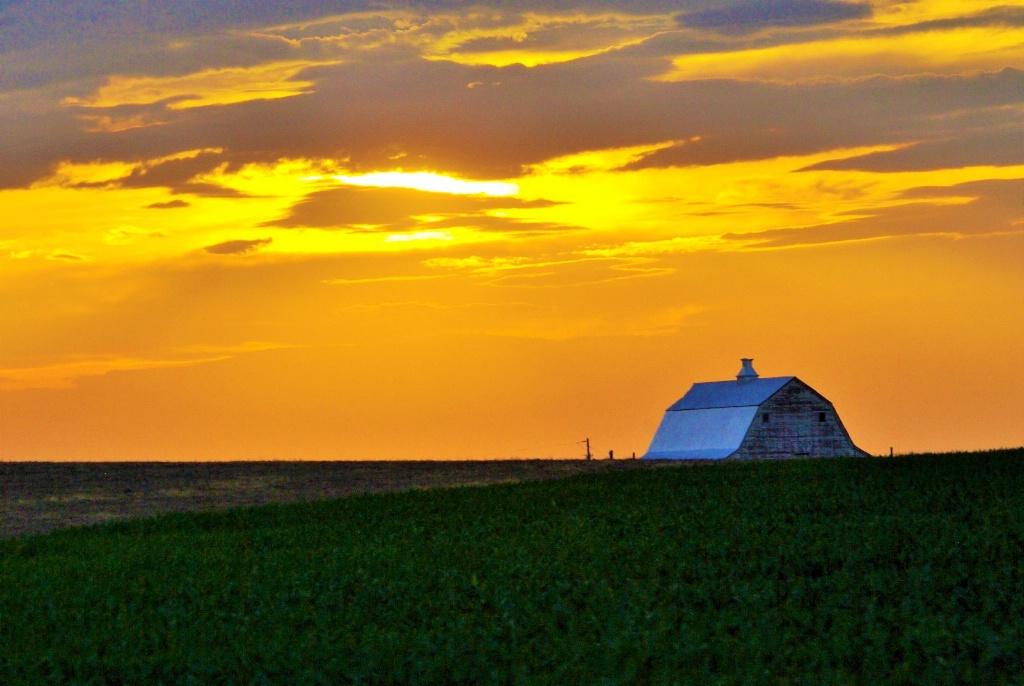 Kansas Farm