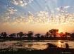 Okavango Skies