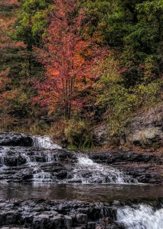 Shohola Falls Pa