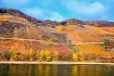 Fall Vineyards on...