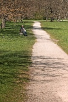 Long Path In The Park