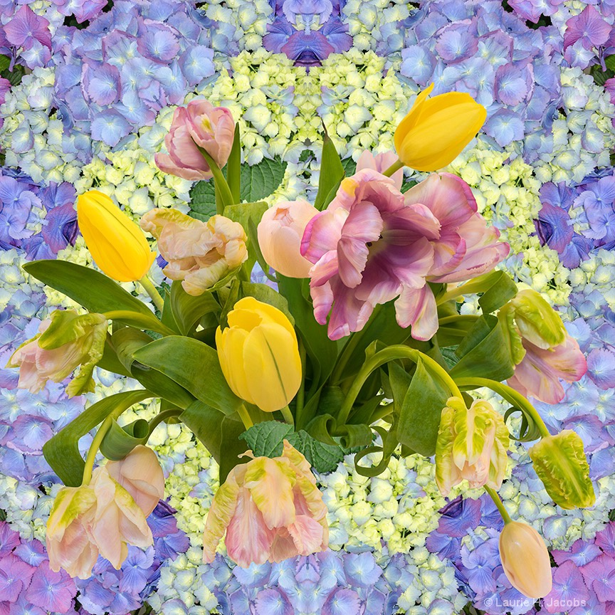 Kaleidoscoope Bouquet 1 - ID: 15458967 © Laurie H. Jacobs