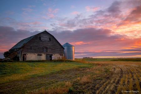 Rural Peace