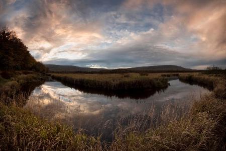 Reflections in Blackwater Creek