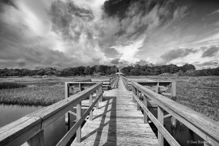 Boardwalk Over the Marsh