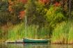 boat-abd-foliage