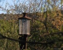 Rural Glass Gas Pump