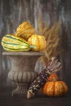 Autumn Stripes and Textures