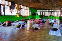 Yoga Asanas and Pranayama for Diabetes.