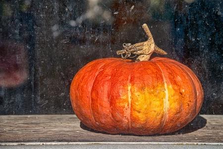 Pumpkin On The Sill