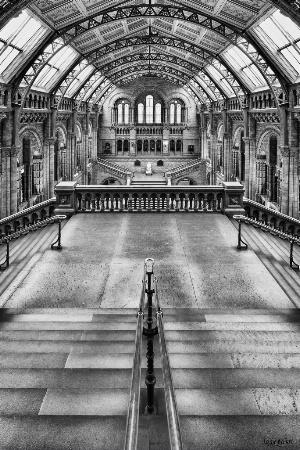 British National History Museum