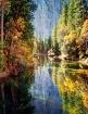 Fall Trees Along ...