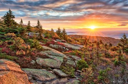 Cadillac Mountain Sunrise - Acadia National Park