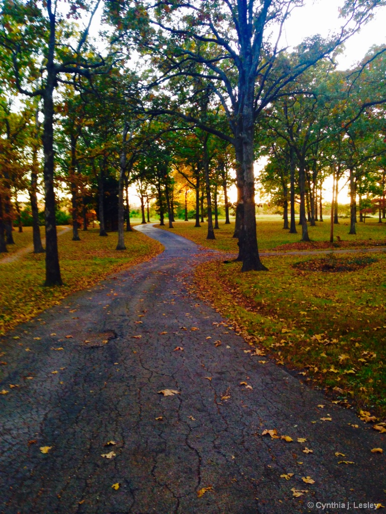 The Desloge park