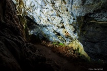 Nature of Cave