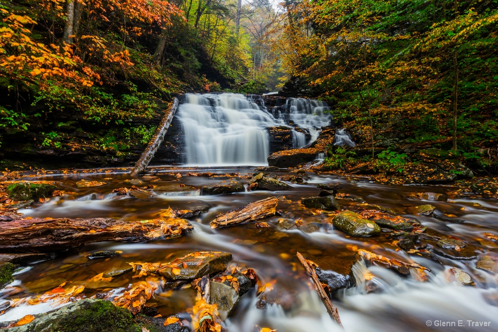 Ricketts Glen in the Rain