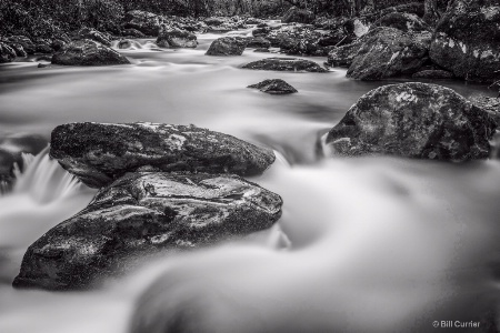 Middle Prong Little River - Tremont Smoky Mountain
