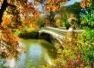 Surrounding Fall ...