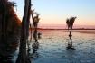Lake Nona Sunrise