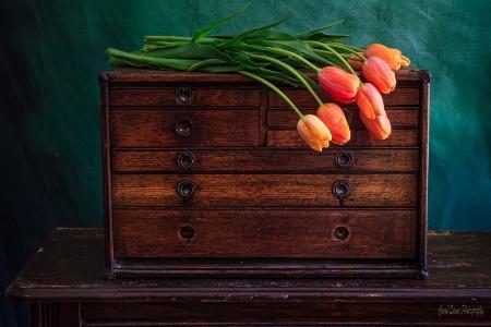 Tulips No 3