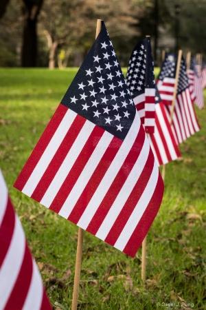 Flag Parade