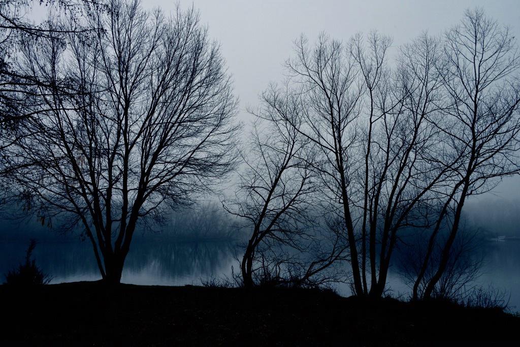 Blue Morning At The Lake