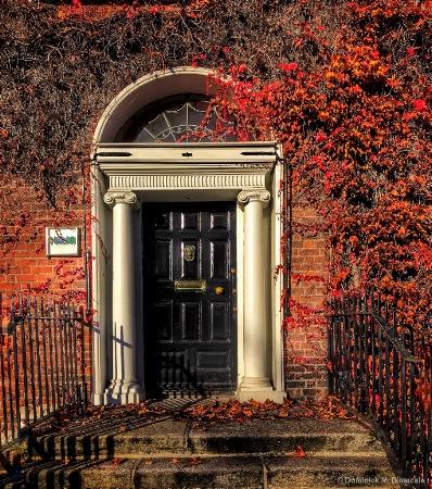 ~ ~ DOOR AND IVY ~ ~