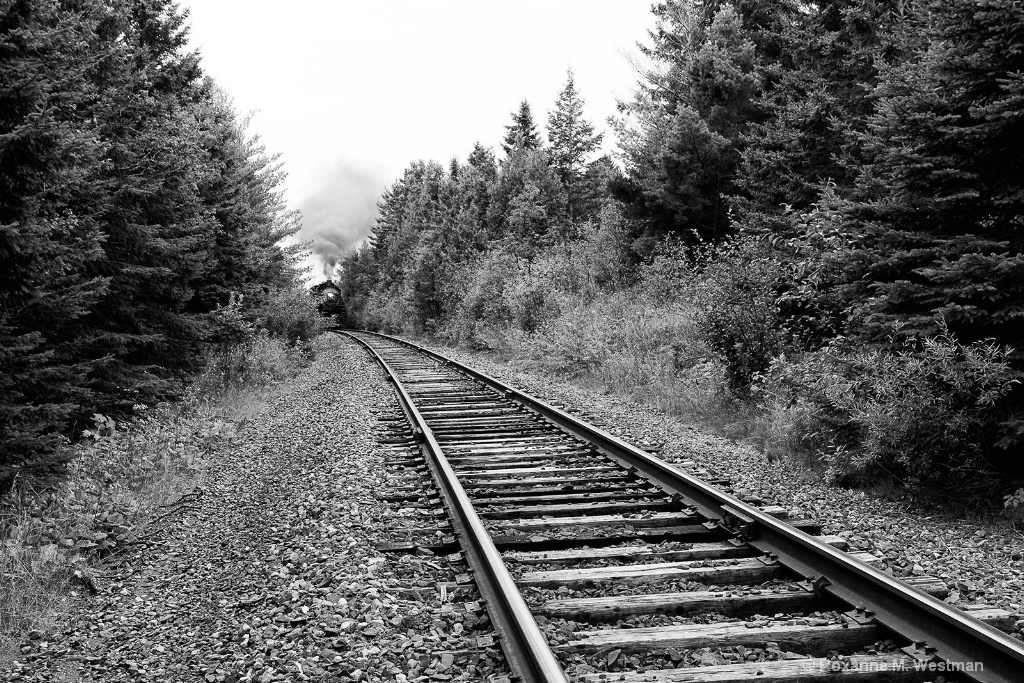 Steam Locomotive around the bend BW - ID: 15493029 © Roxanne M. Westman
