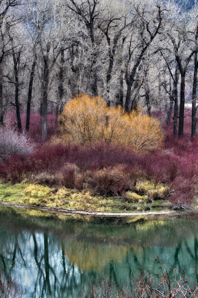 Montana Reflections