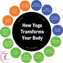Yoga and Asanas Benefits for beginners.