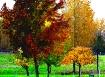 Oregon Fall Color...