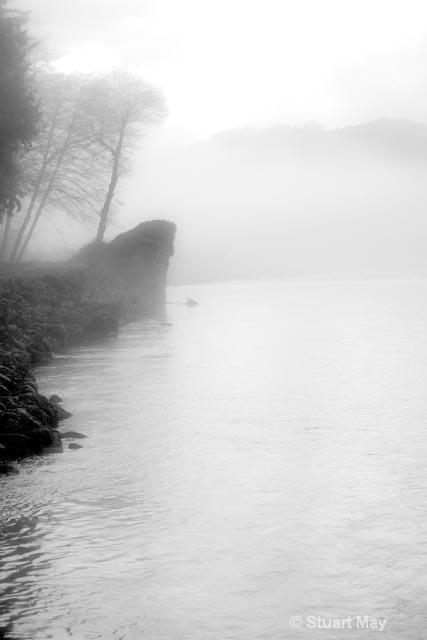 Quinault river fog 1 - ID: 15499310 © Stuart May