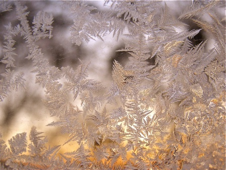 GOLDEN JACK FROST ETCHINGS