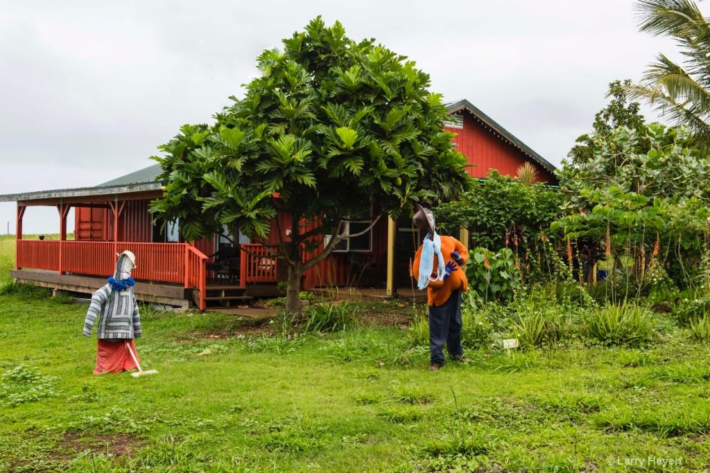 Paia Farmhouse - ID: 15502874 © Larry Heyert