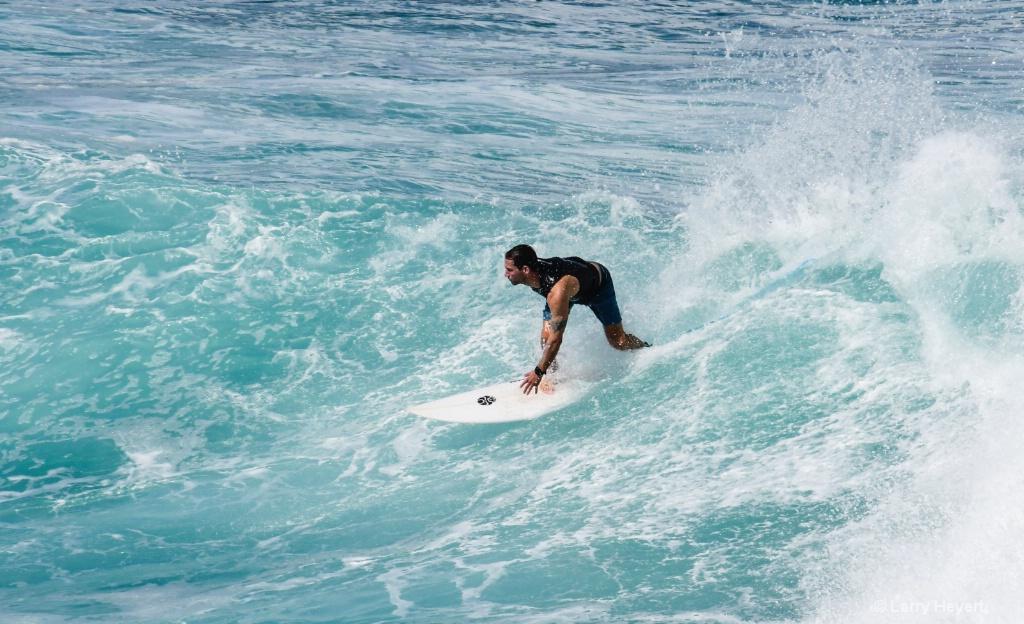 Maui Surf # 11 - ID: 15503336 © Larry Heyert